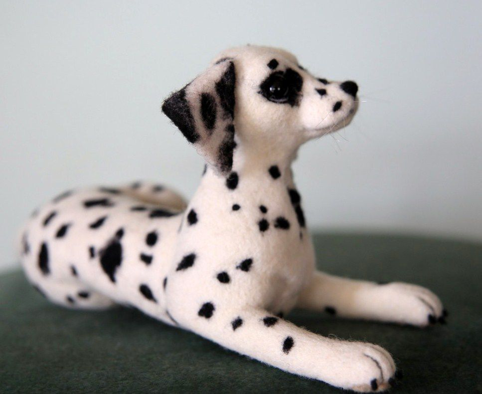 собака далматин, щенок
