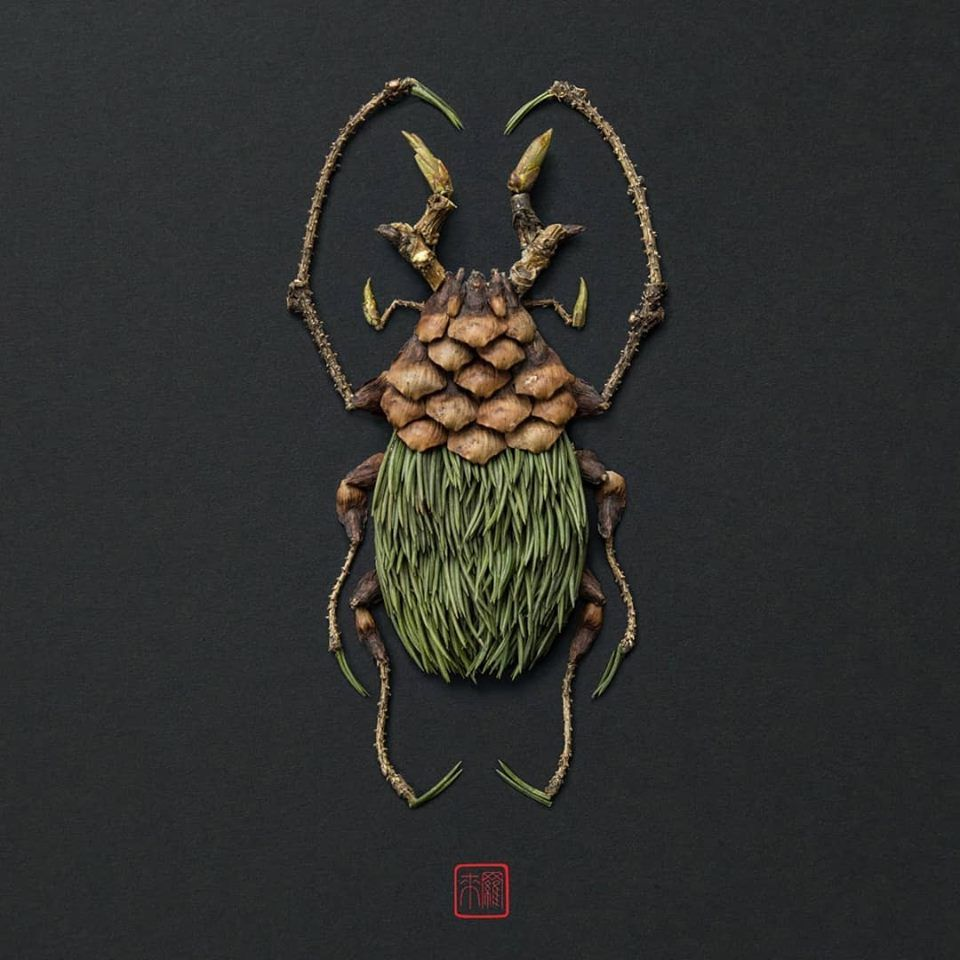 Petal Magic: Unusual Compositions by Raku Inoue, фото № 5