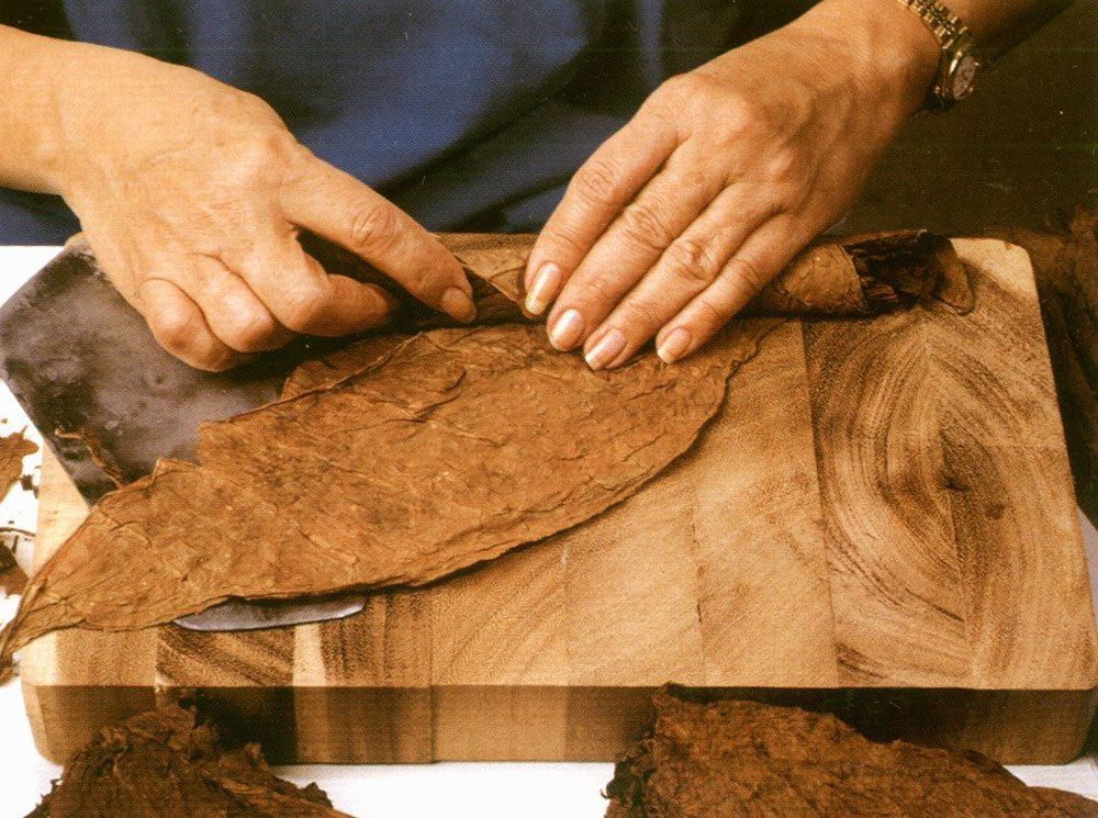 Жареный арахис, табак, кожа, дерево. Прекрасная осень., фото № 2