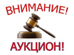 Уже сейчас! 14 - 15 февраля аукцион у Тамары со стартом кратным 400 рублям! Присоединяйтесь! | Ярмарка Мастеров - ручная работа, handmade