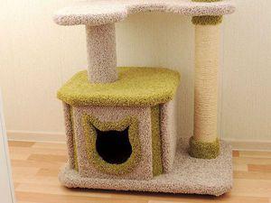 1 Марта - день кошек! Скидка 10% на комплексы для кошек