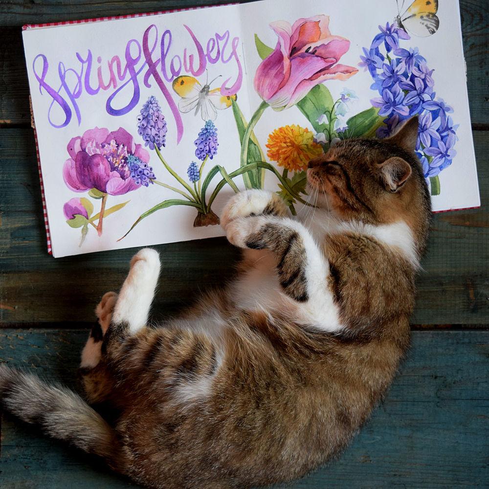 весна 2017, кошка, скетчбук, весенние цветы, акварель, коты