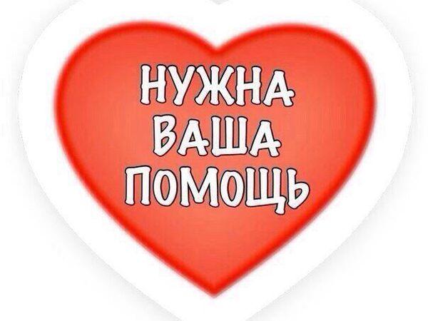 Открыт благотворительный аукцион для Мастера ЯМ Анжелики Добренчук!!!! | Ярмарка Мастеров - ручная работа, handmade