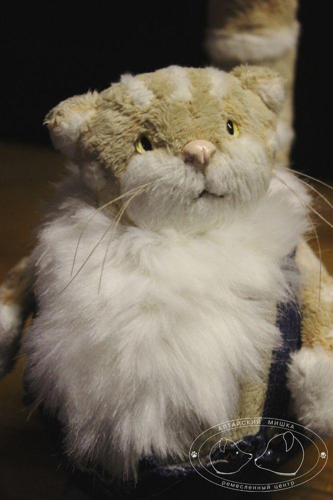 игрушки, кот