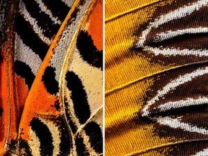 Крылья бабочки  как  средство вдохновения. Ярмарка Мастеров - ручная работа, handmade.
