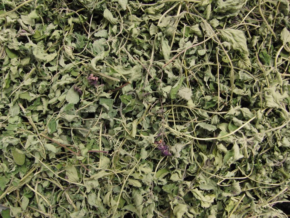 гравилат городской, трава мята лесная сушеная