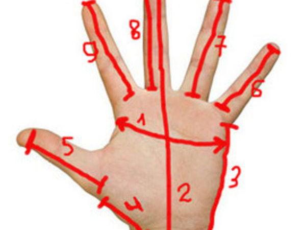 Как снять мерки для перчаток | Ярмарка Мастеров - ручная работа, handmade