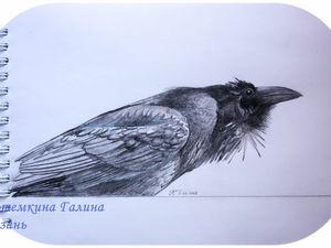 карандашные рисунки — эскизы для росписи фарфора часть 3. Ярмарка Мастеров - ручная работа, handmade.