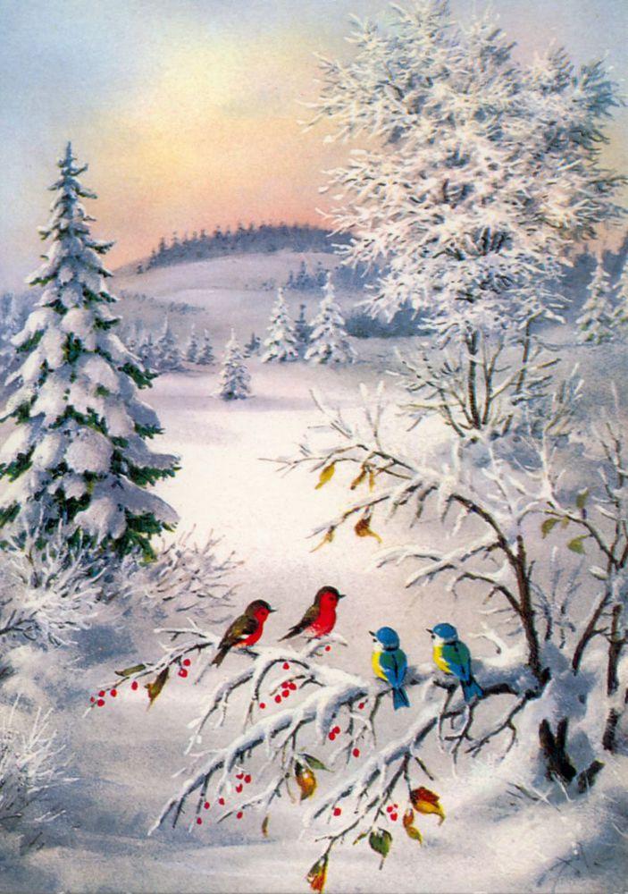 внешним советские открытки с зимним пейзажем находится