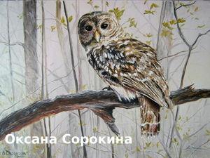 Картина маслом Сова в осенней тиши. Ярмарка Мастеров - ручная работа, handmade.