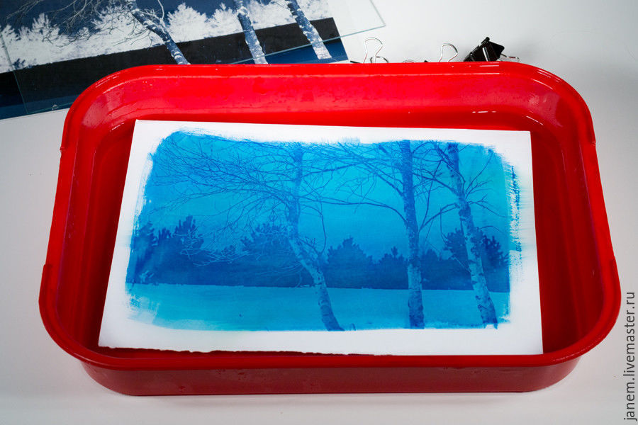 Cyanotype: Printing Photos on Watercolor Paper, фото № 10