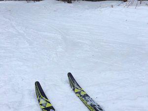 Прогулка на лыжах по лесу и встреча с белкой) | Ярмарка Мастеров - ручная работа, handmade