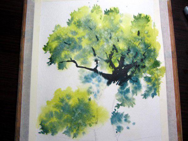 Как нарисовать дерево акварелью, фото № 14