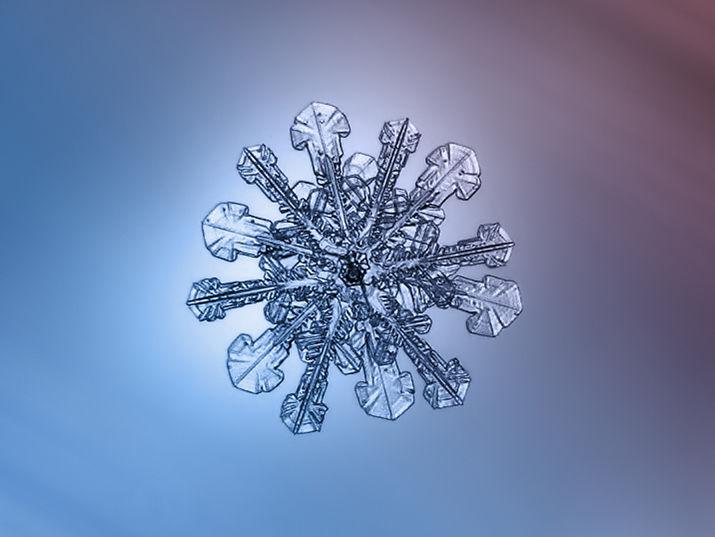 макро снежинок