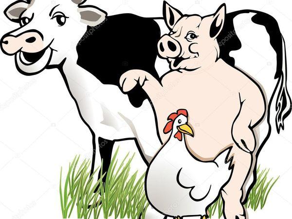 Сказ о том, как мужик корову менял (А Елена Премудрая — куколку) | Ярмарка Мастеров - ручная работа, handmade