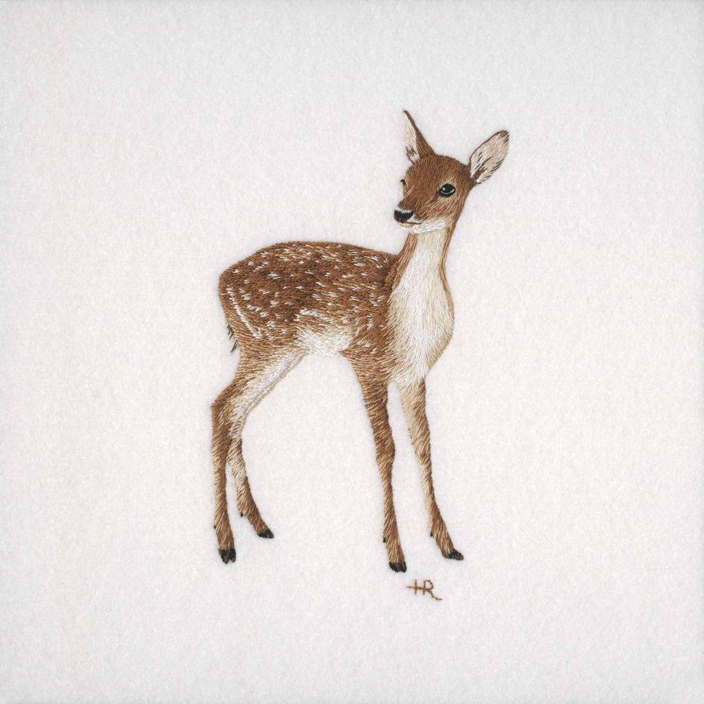 животное, открытка