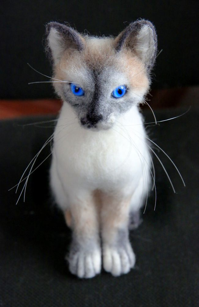 валяный котенок