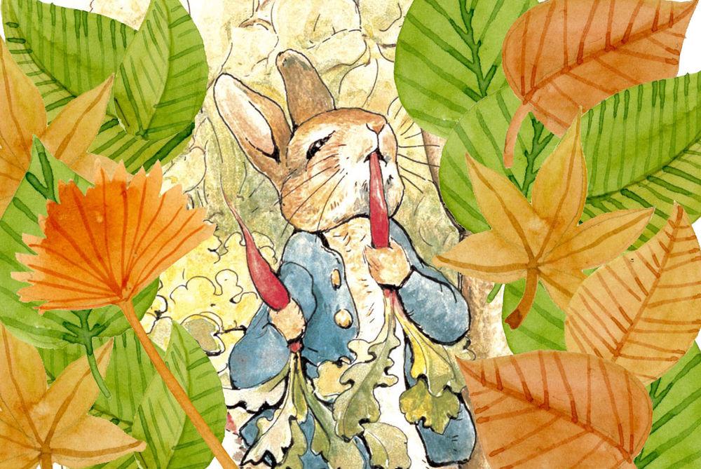 peter rabbit, кодлер wedgwood, кодлер питер кролик
