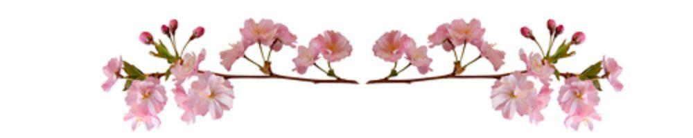 украшения, цветы, гороскоп