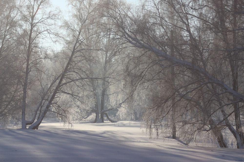 Песенка навеянная нашими местами.., фото № 13