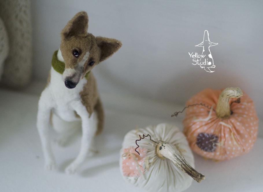 Моня собак, фото № 1