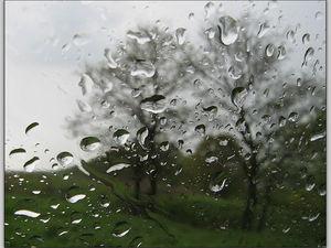 Дождь размывает цены...   Ярмарка Мастеров - ручная работа, handmade