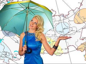 Стильный «Прогноз погоды» от популярных телеведущих. Ярмарка Мастеров - ручная работа, handmade.