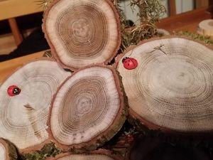 Спилы дуба шлифованные. Ярмарка Мастеров - ручная работа, handmade.