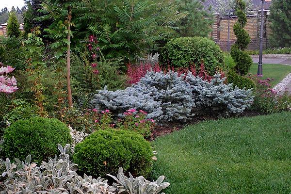ландшафтный дизайн, авторский сад, дачный дизайн