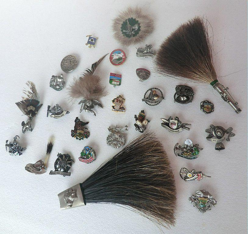 коллекция значков, альпы