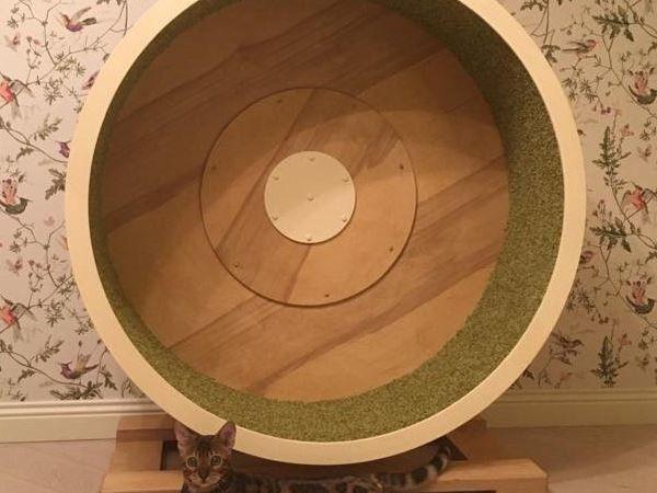 Беговое колесо тренажер для кошек | Ярмарка Мастеров - ручная работа, handmade