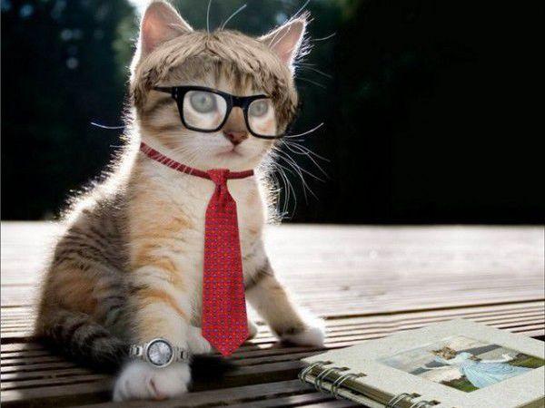 Кто такой интеллигент | Ярмарка Мастеров - ручная работа, handmade