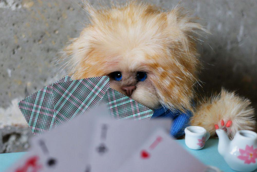 кот, игрушка, коты
