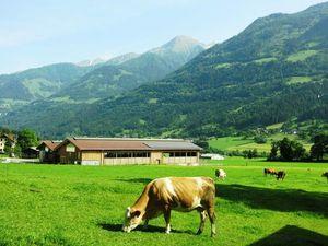 Провинциальная Европа. Хорошо в деревне летом, особенно в австрийской. Ярмарка Мастеров - ручная работа, handmade.