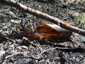 Берегите лес от огня!. Ярмарка Мастеров - ручная работа, handmade.