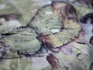 Волшебные эко-принты Ольги Алонсо. Интервью с мастером | Ярмарка Мастеров - ручная работа, handmade