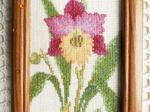 Орхидеи по акции. Ярмарка Мастеров - ручная работа, handmade.