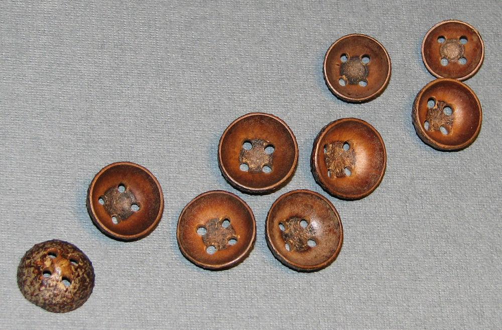 плюска, bilbo's buttons