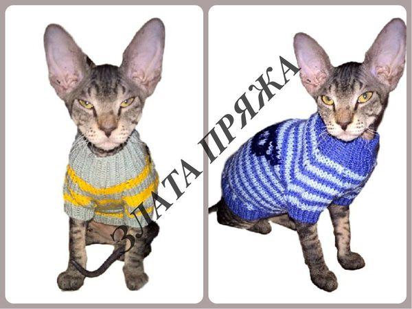 Свитера для котенка Цезарь | Ярмарка Мастеров - ручная работа, handmade