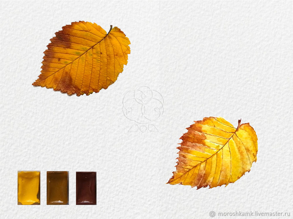 Drawing an Autumn Leaf with Watercolours, фото № 16