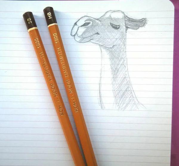 Как рисовать каждый день