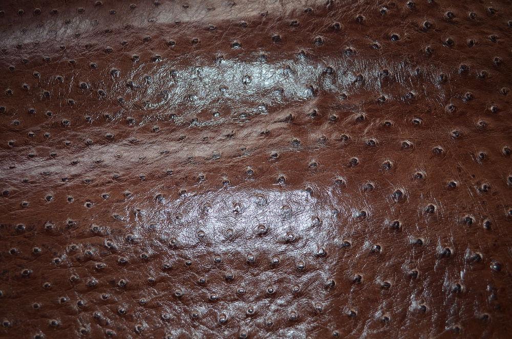 Образцы кожи, которые есть в наличии, фото № 22