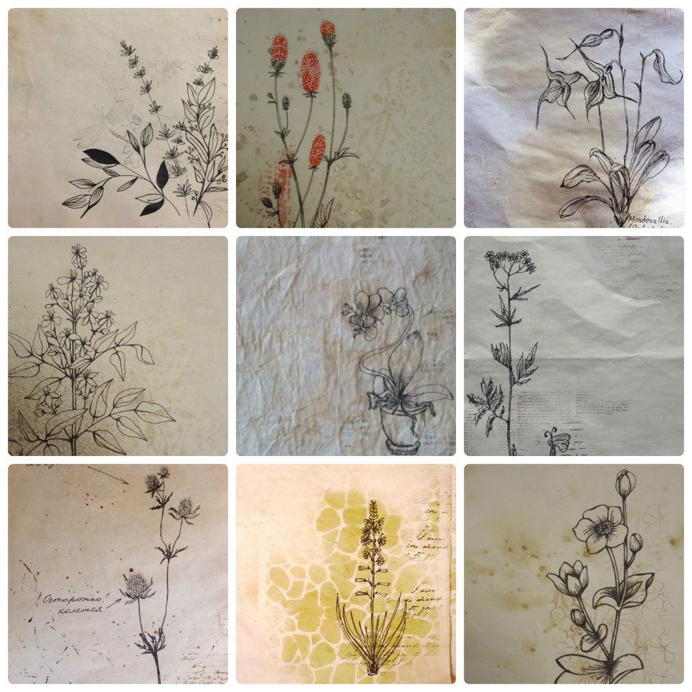 скрапбукинг онлайн, ботанический рисунок