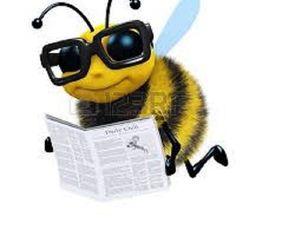 Из жизни пчел. Занимательные истории. Часть 2. Ярмарка Мастеров - ручная работа, handmade.