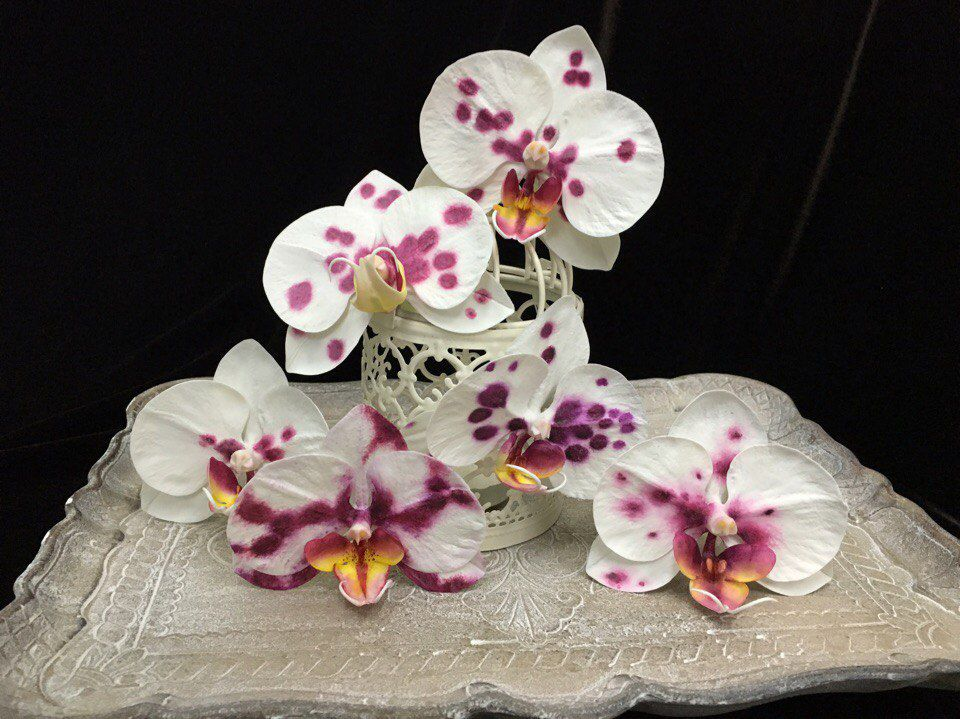 фаленопсис, полимерная глина, полимерная флористика, лепка цветов, лепка из глины, лепка реалистичных цветов, школа лепки цветов