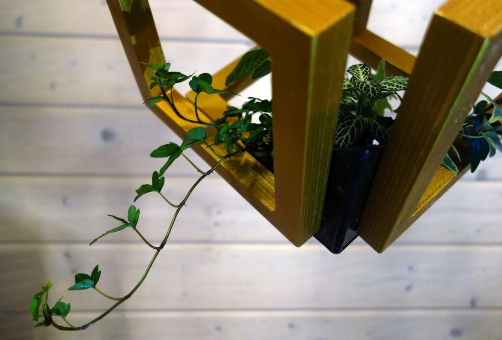 кубизм, золото, светильник из дерева, флорариум, сад нд столом