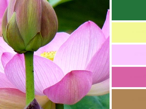 Летние оттенки: фото и палитры цветов. 32 августа! | Ярмарка Мастеров - ручная работа, handmade