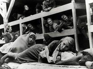 Рапорт акушерки из Освенцима. Ярмарка Мастеров - ручная работа, handmade.