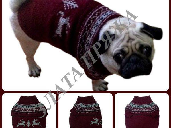 Вязаный свитер для мопса | Ярмарка Мастеров - ручная работа, handmade