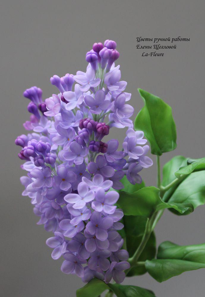 цветы из глины, лепка из полимерной глины, флористика